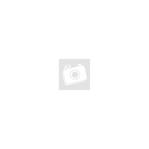 Lechat Excelence Szuperprémium steril kacsa száraz macskaeledel 1,5kg
